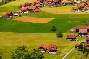 huizen met rode daken in grindelwald, zwitserland foto