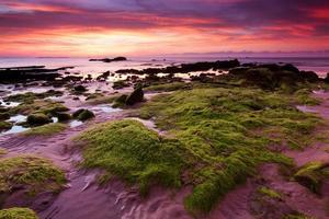 bemoste rotsen bij zonsondergang in Kudat, Sabah, Oost-Maleisië, Borneo