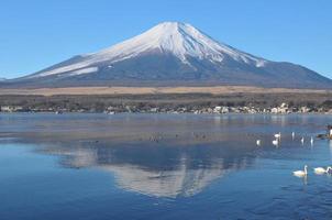 Mt Fuji en zijn reflectie op het Shojiko-meer