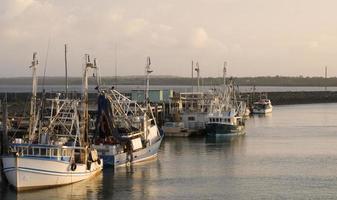vissersboten in hervey bay / australië