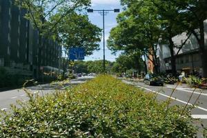 japan harajuku straat