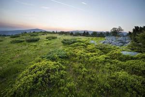 zonsondergang over groen veld foto