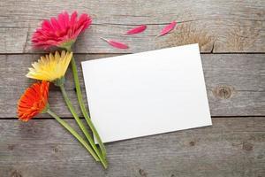 drie kleurrijke gerberabloemen foto
