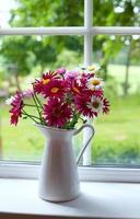 madeliefjes op vensterbank