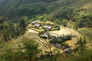 terrasvormige rijstvelden in sapa, vietnam