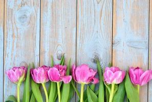rij van roze tulpen op oud hout met lege ruimte