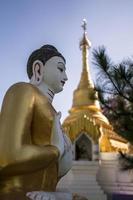 Boeddhabeeld en pagode foto