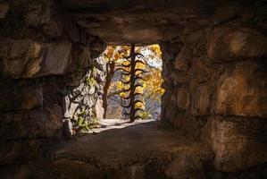 Burgfenster foto
