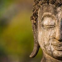 stenen Boeddha hoofd standbeeld close-up foto