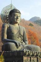 boeddha in de sinheungsa-tempel in het seoraksan national park, sout