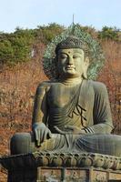 boeddha in de sinheungsa-tempel in het nationale park seoraksan