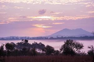 een landschapsmening van savanneveld in de schemering