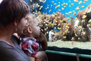 moeder met kind in het aquarium foto