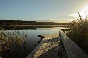 houten voetpad bij het meer in de ochtend foto