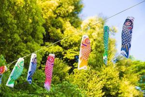 traditionele Japanse karpervliegers tegen een blauwe hemel