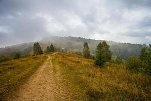 weg naar de bergen met blauwe lucht in de Karpaten foto
