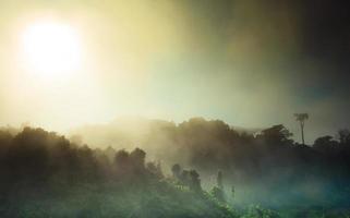 zonsopgang en mist foto