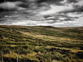moerasland