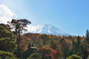 Mt Fuji over de bomen in de herfst (xxxlarge)