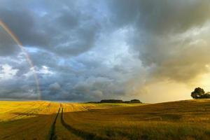 velden regenboog en zonsondergang in Noord-Polen.