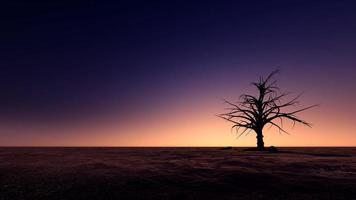 eiland in zonsondergangstrand foto