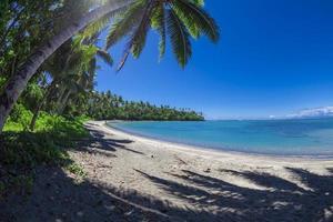 tropisch samoa foto