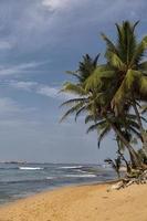 Negombo Beach, Sri Lanka foto
