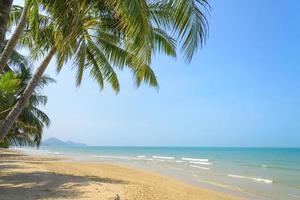 tropisch strand met kokospalm op zomertijd foto
