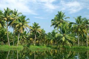 binnenwateren van Kerala foto