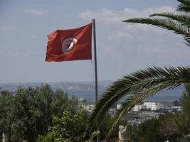 Tunis foto