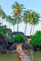 prachtig uitzicht op de palmbomen en rotsachtige kust foto