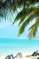 blauw prachtig zee strand