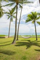 witte hangmat met palmbomen foto