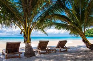 ligbedden op exotisch tropisch palmenstrand foto