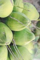 close-up van verschillende groene kokosnoten op boom foto