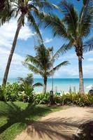 tropische zee vanuit de tuin foto