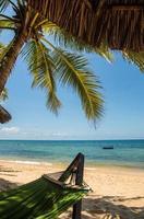 hangmat en palmen foto