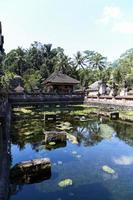 kleine watertuin van Bali, Indonesië