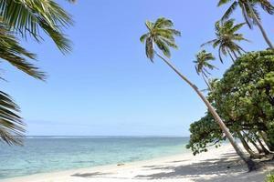 Coral Coast, Fiji foto