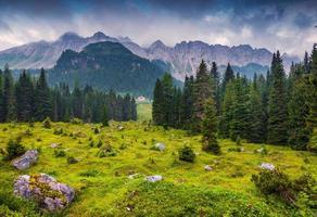 mistige zomerochtend in de Italiaanse Alpen