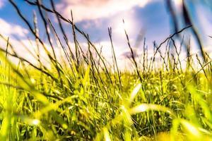 zon komt uit stapelwolken en verlicht velden