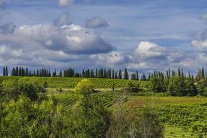 panorama van de heuvels in de chianti-streek, toscane (italië)