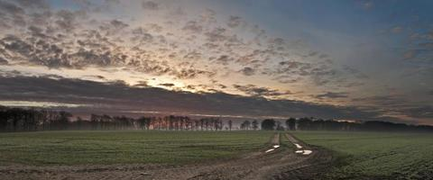 zonsopgang op het veld