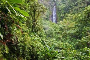 trafalgar falls, dominica foto