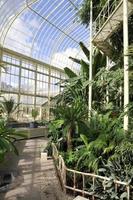 botanische tuinen - dublin, ierland foto