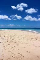 paradijselijk strand van Barbados.