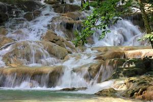 dunn's river valt, jamaica foto