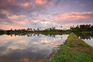 platteland reflectie
