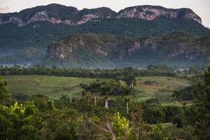landschap van mogote in vinales-vallei in cuba. foto