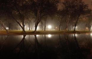 stilstaand water in de vroege ochtend foto